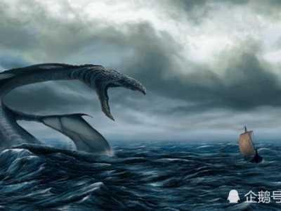 深海恐惧症测试图 一组深